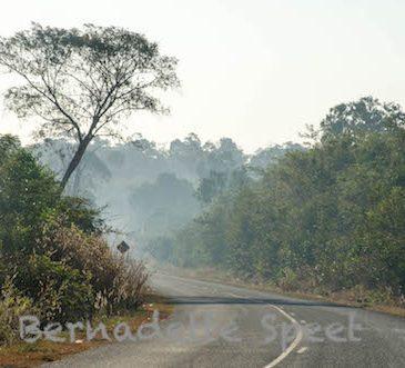 Fietsroute Cambodja